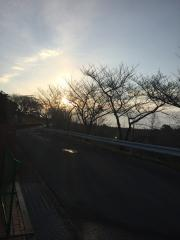 合宿3日目(1)